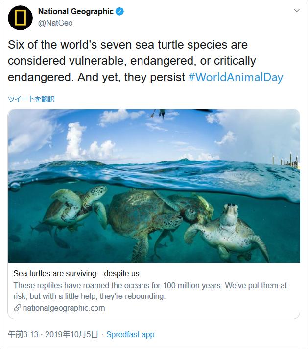 参考イメージ:National Geographic、Twitterカウントより