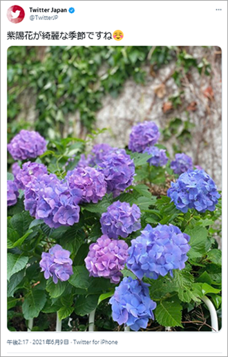 イメージ画像:ツイッタージャパン2021年6月9日投稿